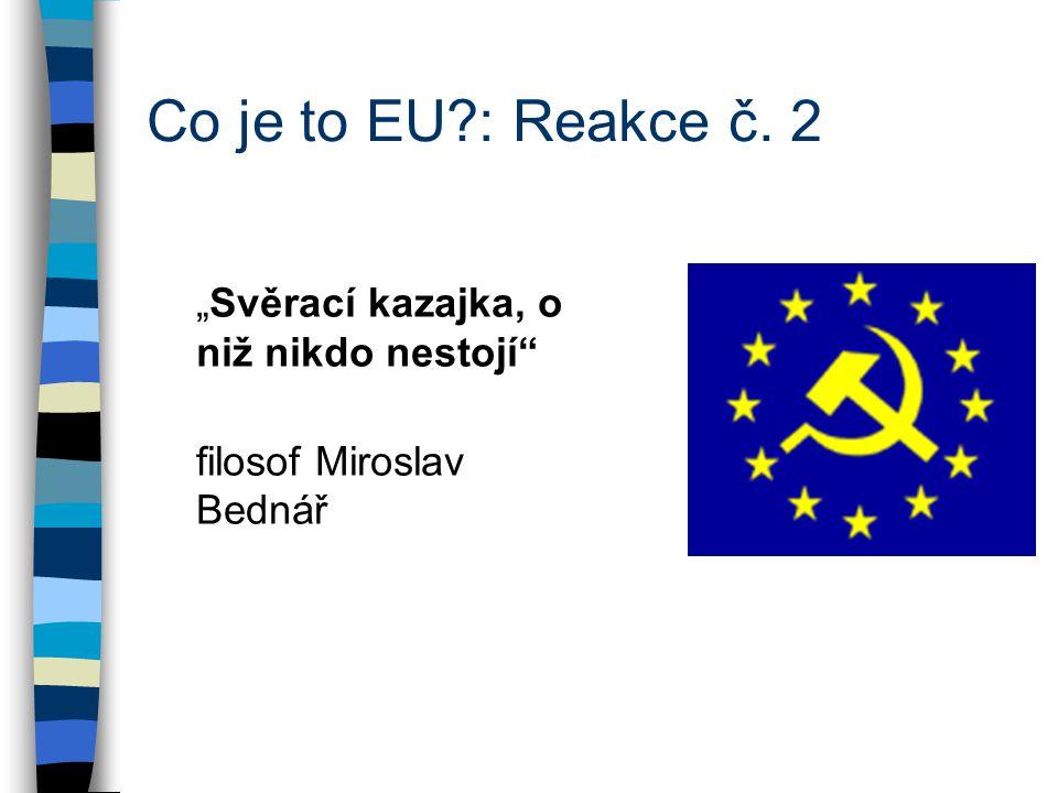 """""""Svěrací kazajka, o niž nikdo nestojí filosof Miroslav Bednář Co je to EU : Reakce č. 2"""