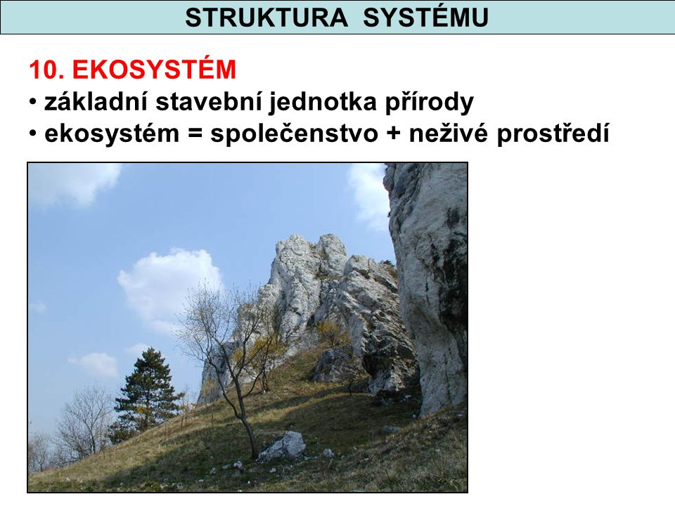 STRUKTURA SYSTÉMU 10. EKOSYSTÉM základní stavební jednotka přírody ekosystém = společenstvo + neživé prostředí