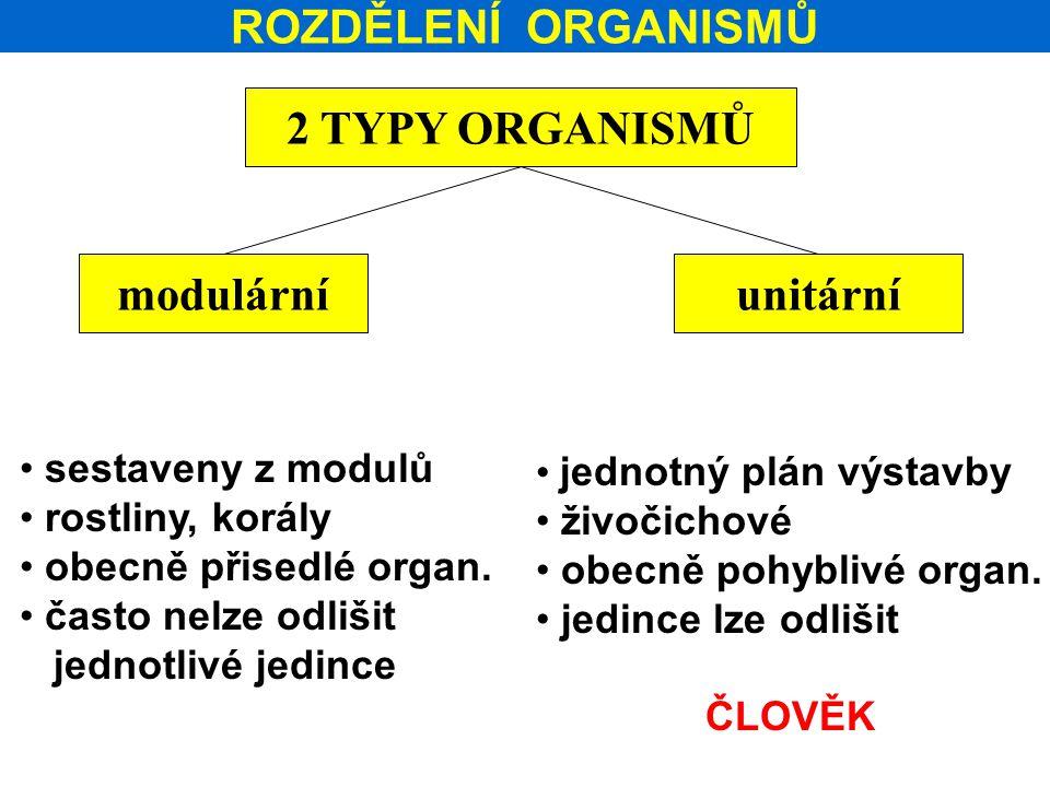 ROZDĚLENÍ ORGANISMŮ 2 TYPY ORGANISMŮ modulárníunitární sestaveny z modulů rostliny, korály obecně přisedlé organ. často nelze odlišit jednotlivé jedin
