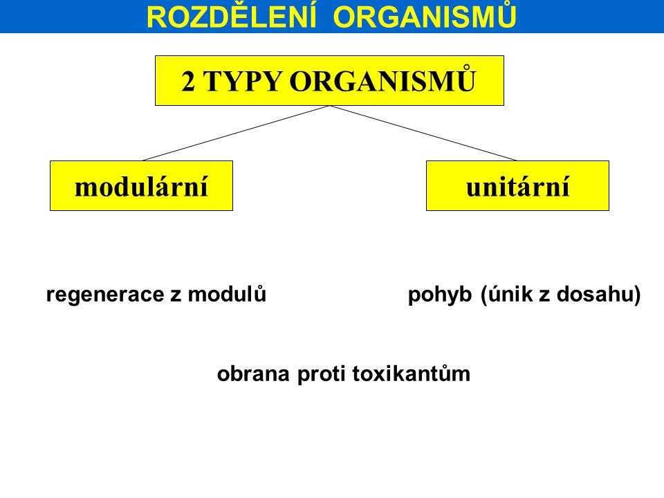 ROZDĚLENÍ ORGANISMŮ 2 TYPY ORGANISMŮ modulárníunitární regenerace z modulů pohyb (únik z dosahu) obrana proti toxikantům