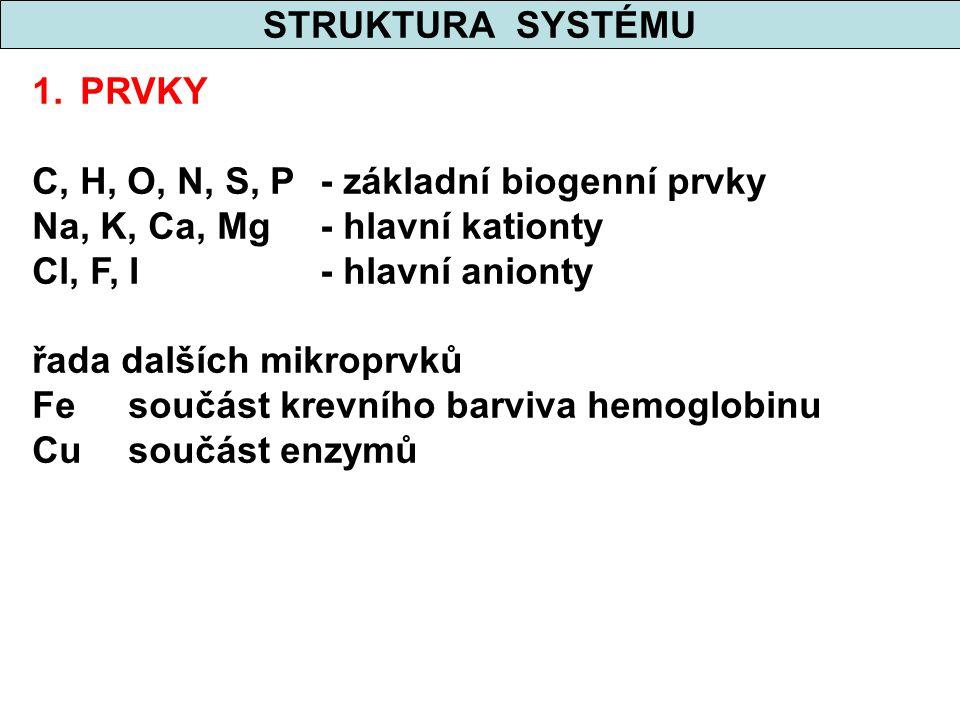 STRUKTURA SYSTÉMU 1.PRVKY C, H, O, N, S, P- základní biogenní prvky Na, K, Ca, Mg- hlavní kationty Cl, F, I- hlavní anionty řada dalších mikroprvků Fe