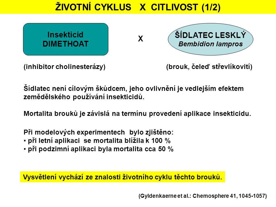 ŽIVOTNÍ CYKLUS X CITLIVOST (1/2) Insekticid DIMETHOAT ŠÍDLATEC LESKLÝ Bembidion lampros X (inhibitor cholinesterázy)(brouk, čeleď střevlíkovití) Při m