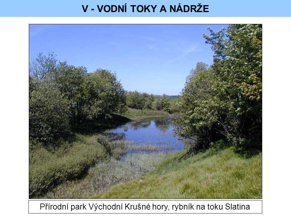V - VODNÍ TOKY A NÁDRŽE Přírodní park Východní Krušné hory, rybník na toku Slatina