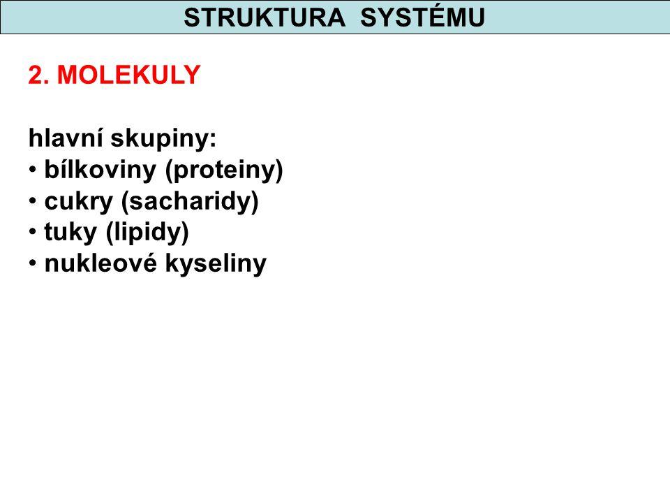 STRUKTURA SYSTÉMU 2. MOLEKULY hlavní skupiny: bílkoviny (proteiny) cukry (sacharidy) tuky (lipidy) nukleové kyseliny