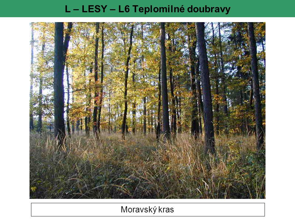 L – LESY – L6 Teplomilné doubravy Moravský kras