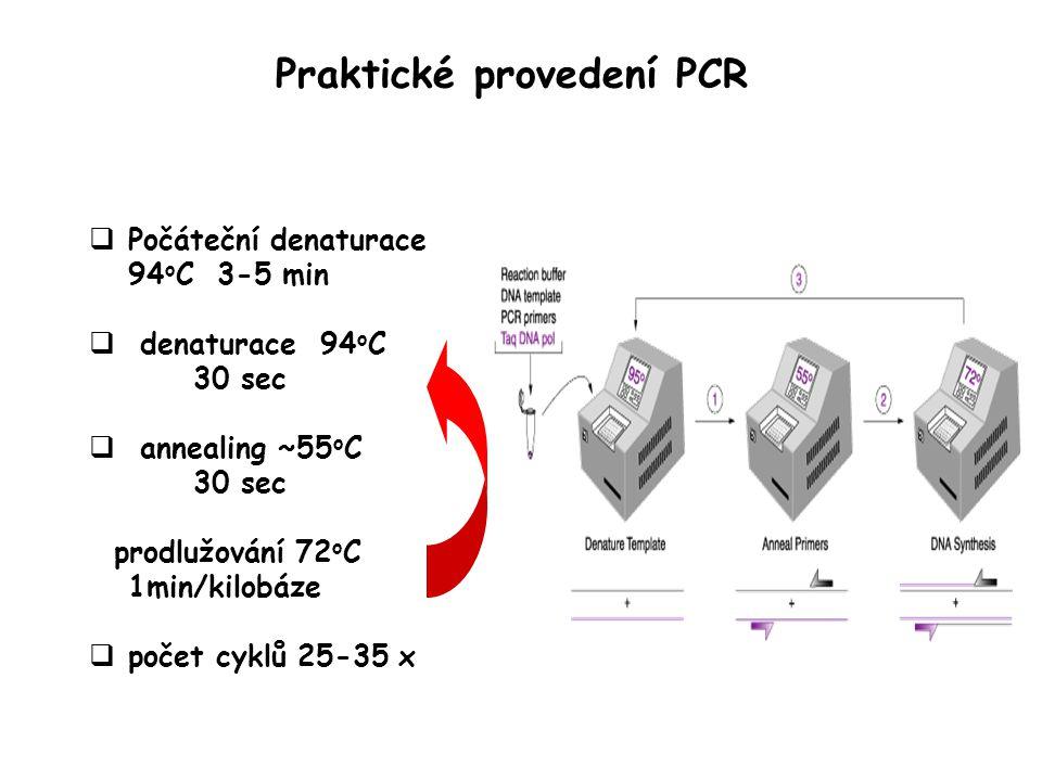 Praktické provedení PCR  Počáteční denaturace 94 o C 3-5 min  denaturace 94 o C 30 sec  annealing ~55 o C 30 sec prodlužování 72 o C 1min/kilobáze  počet cyklů 25-35 x