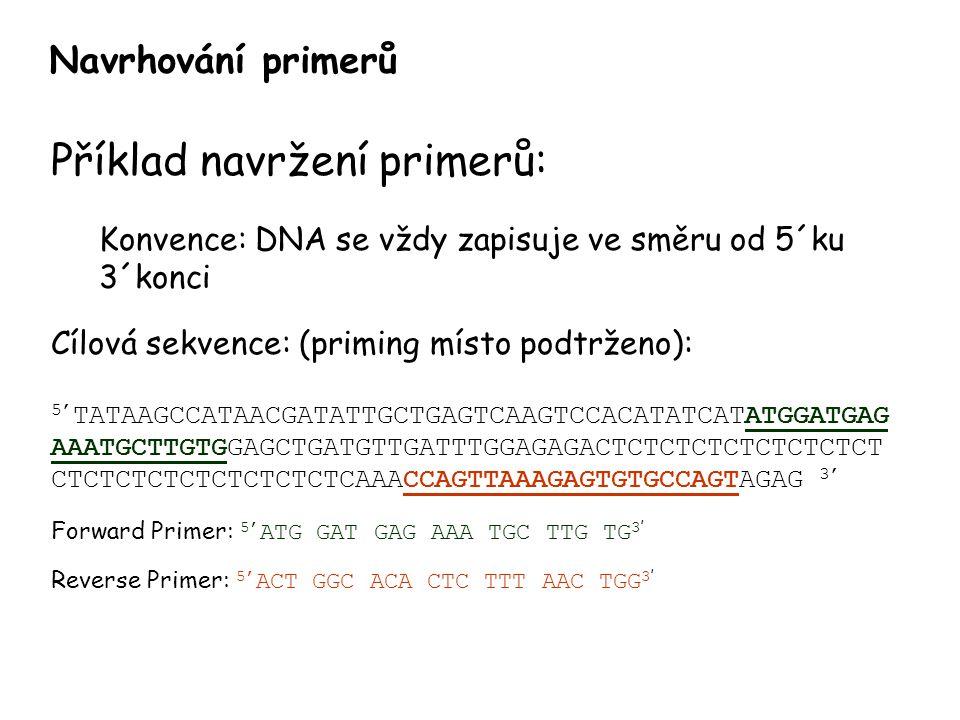 Navrhování primerů Příklad navržení primerů: Konvence: DNA se vždy zapisuje ve směru od 5´ku 3´konci Cílová sekvence: (priming místo podtrženo): 5' TATAAGCCATAACGATATTGCTGAGTCAAGTCCACATATCATATGGATGAG AAATGCTTGTGGAGCTGATGTTGATTTGGAGAGACTCTCTCTCTCTCTCTCT CTCTCTCTCTCTCTCTCTCAAACCAGTTAAAGAGTGTGCCAGTAGAG 3' Forward Primer: 5' ATG GAT GAG AAA TGC TTG TG 3 ' Reverse Primer: 5' ACT GGC ACA CTC TTT AAC TGG 3 '
