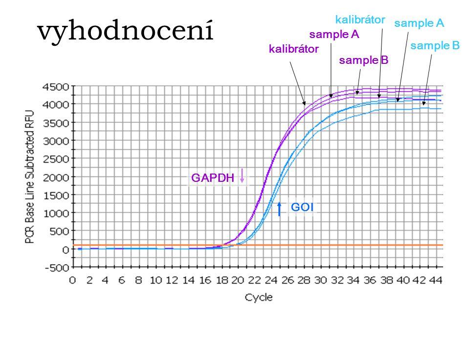 vyhodnocení kalibrátor GOI sample A sample B kalibrátor sample A sample B GAPDH