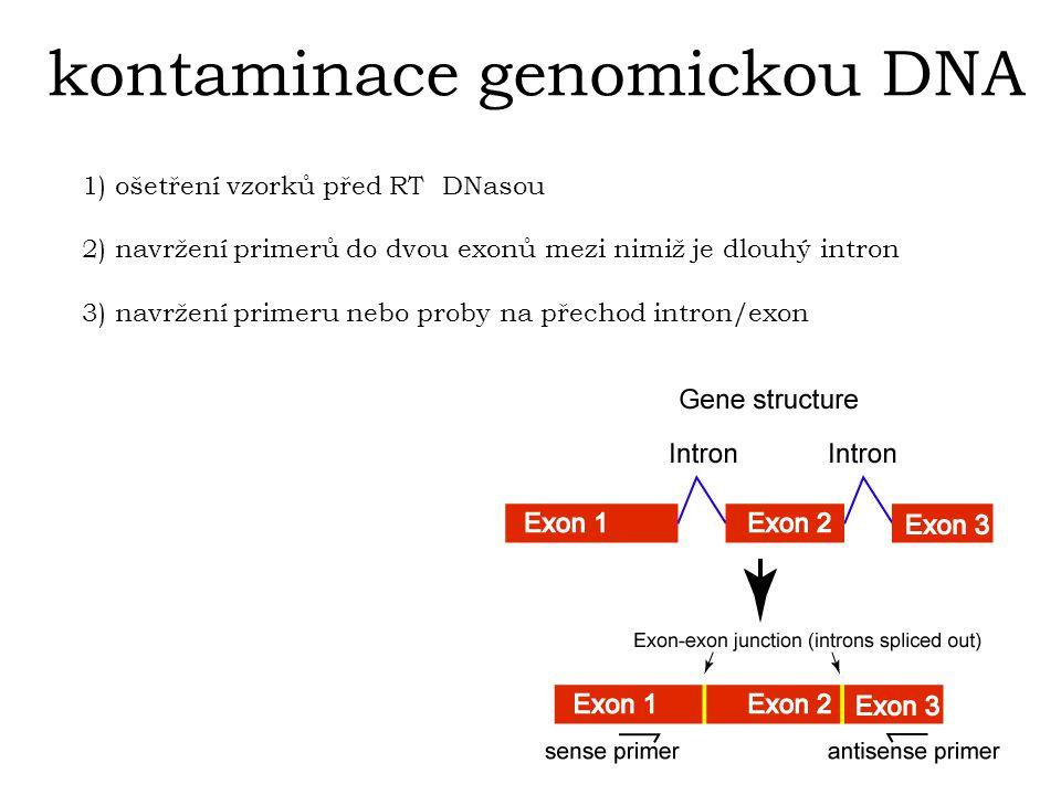 kontaminace genomickou DNA 1) ošetření vzorků před RT DNasou 2) navržení primerů do dvou exonů mezi nimiž je dlouhý intron 3) navržení primeru nebo proby na přechod intron/exon