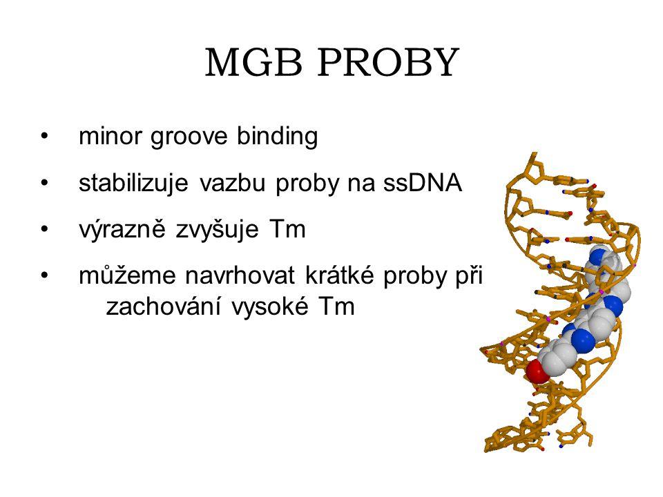 MGB PROBY minor groove binding stabilizuje vazbu proby na ssDNA výrazně zvyšuje Tm můžeme navrhovat krátké proby při zachování vysoké Tm