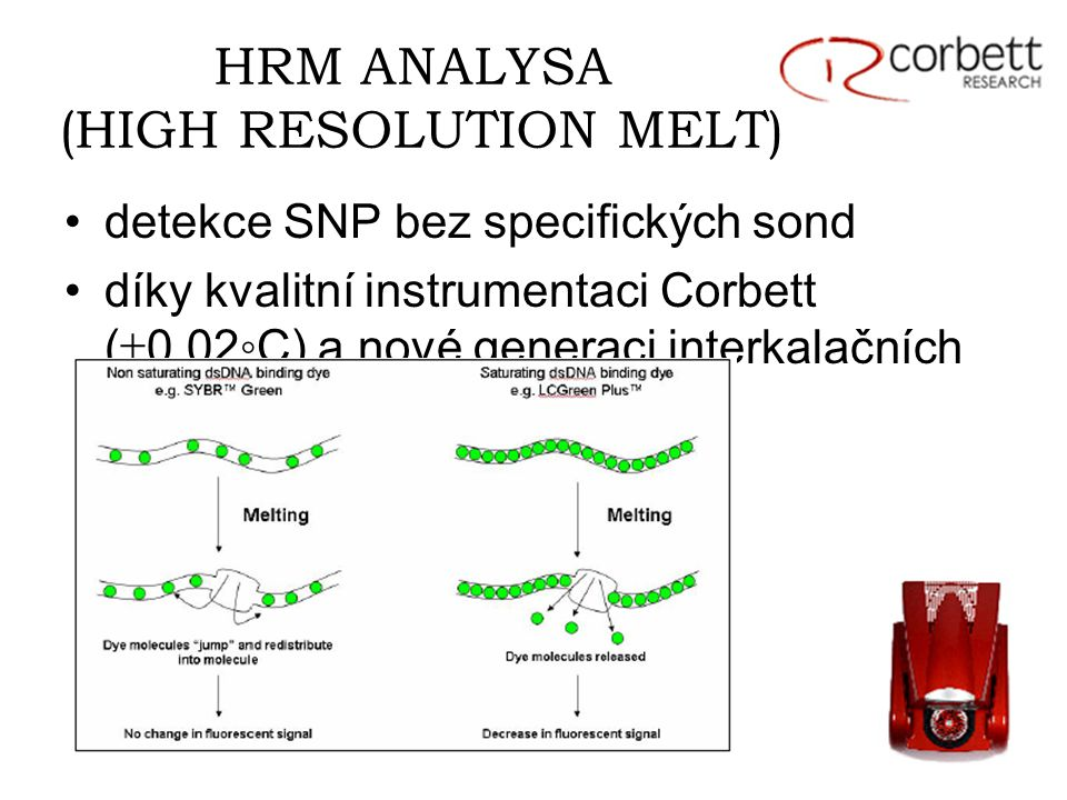 HRM ANALYSA (HIGH RESOLUTION MELT) detekce SNP bez specifických sond díky kvalitní instrumentaci Corbett (  0.02◦C) a nové generaci interkalačních barviv (LCGreenPlus)