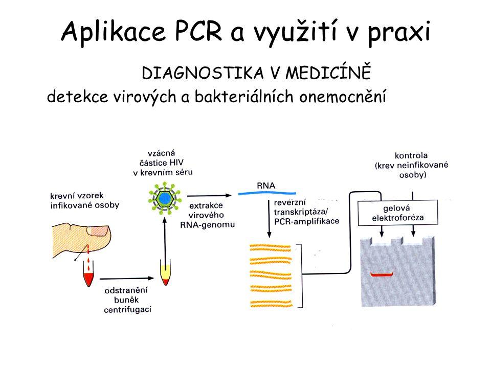 DIAGNOSTIKA V MEDICÍNĚ detekce virových a bakteriálních onemocnění