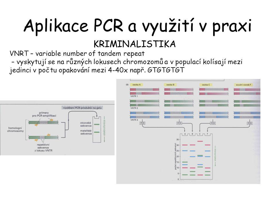 Aplikace PCR a využití v praxi KRIMINALISTIKA VNRT – variable number of tandem repeat – vyskytují se na různých lokusech chromozomů a v populací kolísají mezi jedinci v počtu opakování mezi 4-40x např.