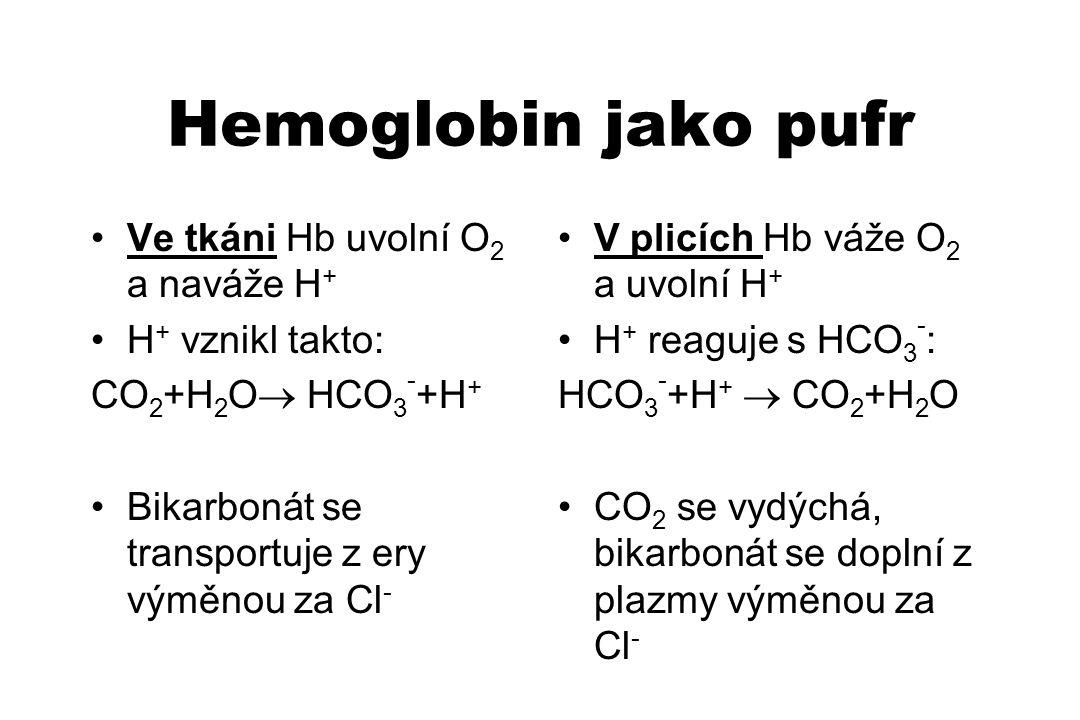 Hemoglobin jako pufr Ve tkáni Hb uvolní O 2 a naváže H + H + vznikl takto: CO 2 +H 2 O  HCO 3 - +H + Bikarbonát se transportuje z ery výměnou za Cl -