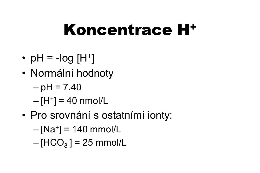 Koncentrace H + pH = -log [H + ] Normální hodnoty –pH = 7.40 –[H + ] = 40 nmol/L Pro srovnání s ostatními ionty: –[Na + ] = 140 mmol/L –[HCO 3 - ] = 2