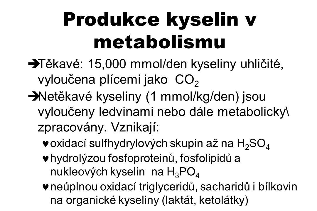 Produkce kyselin v metabolismu  Těkavé: 15,000 mmol/den kyseliny uhličité, vyloučena plícemi jako CO 2  Netěkavé kyseliny (1 mmol/kg/den) jsou vylou