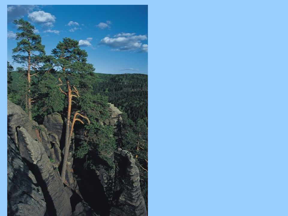 Silné a slabé stránky klimatického systému, ozonové vrstvy Emise skleníkových plynů 25% pod úrovní roku 1990 Spotřeba látek poškozujících ozonovou vrstvu Země byla zásadním způsobem omezena ------------------------------------- emise CO 2 na obyv.