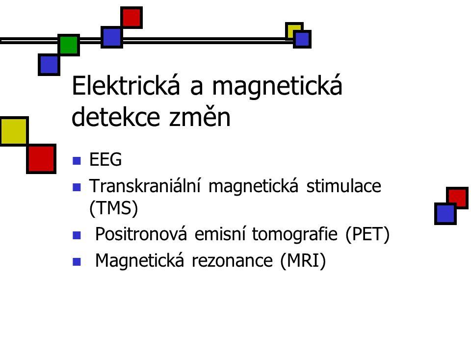 Elektrická a magnetická detekce změn EEG Transkraniální magnetická stimulace (TMS) Positronová emisní tomografie (PET) Magnetická rezonance (MRI)