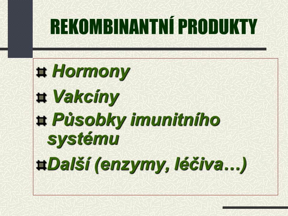 REKOMBINANTNÍ PRODUKTY Hormony Hormony Vakcíny Vakcíny Působky imunitního systému Působky imunitního systému Další (enzymy, léčiva…)