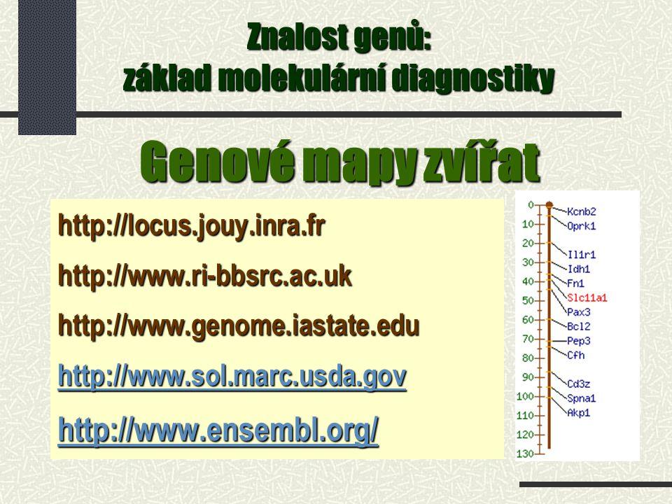 Genové mapy zvířat http://locus.jouy.inra.frhttp://www.ri-bbsrc.ac.ukhttp://www.genome.iastate.edu http://www.sol.marc.usda.gov http://www.ensembl.org