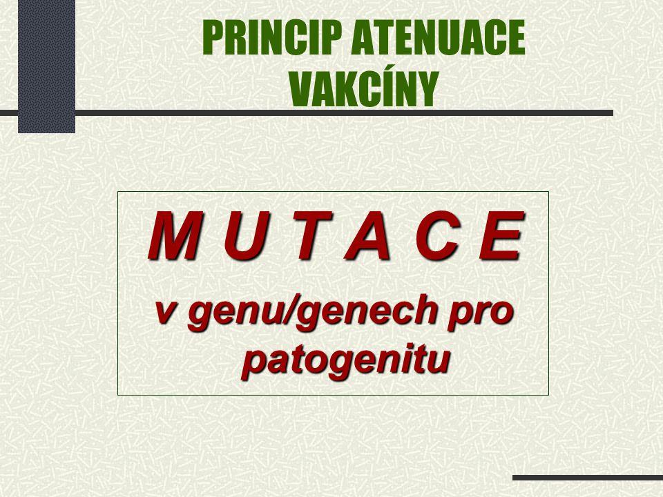 PRINCIP ATENUACE VAKCÍNY M U T A C E v genu/genech pro patogenitu