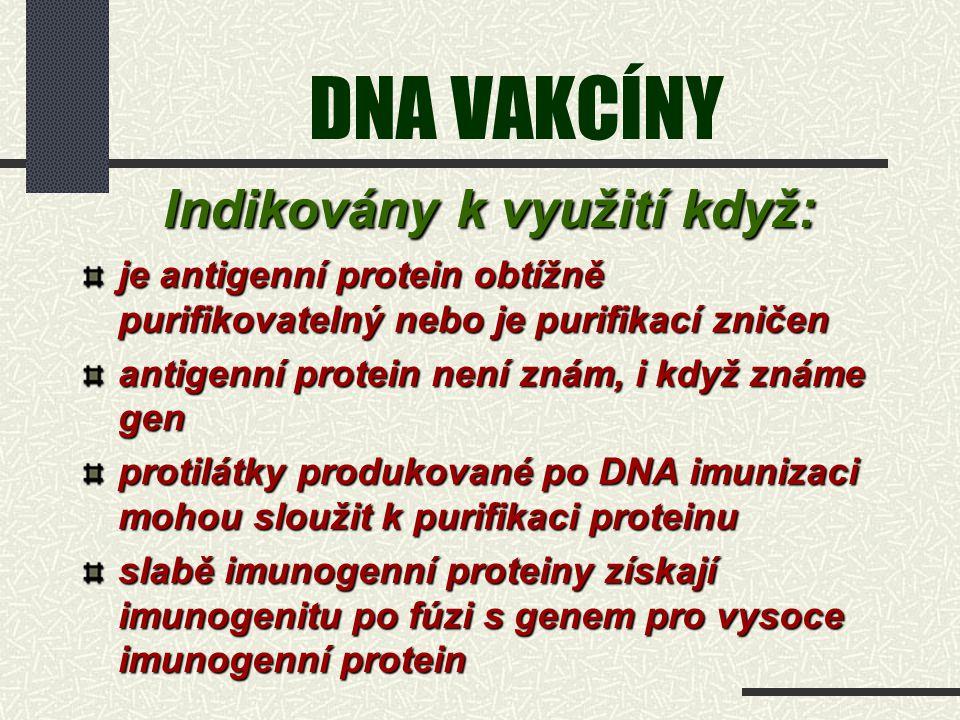 DNA VAKCÍNY Indikovány k využití když: Indikovány k využití když: je antigenní protein obtížně purifikovatelný nebo je purifikací zničen antigenní pro