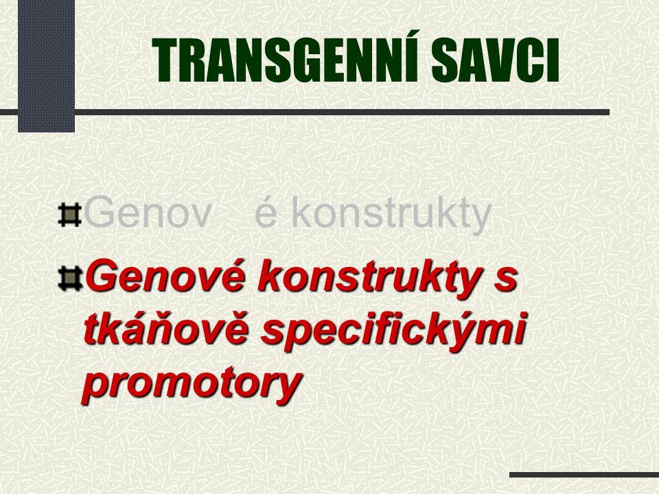 TRANSGENNÍ SAVCI Genové konstrukty Genové konstrukty s tkáňově specifickými promotory