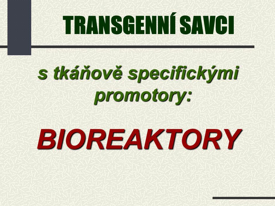 TRANSGENNÍ SAVCI s tkáňově specifickými promotory: BIOREAKTORY