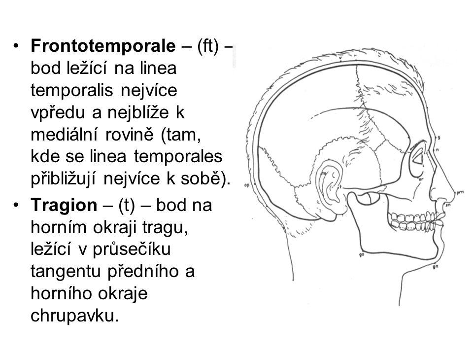 Frontotemporale – (ft) – bod ležící na linea temporalis nejvíce vpředu a nejblíže k mediální rovině (tam, kde se linea temporales přibližují nejvíce k