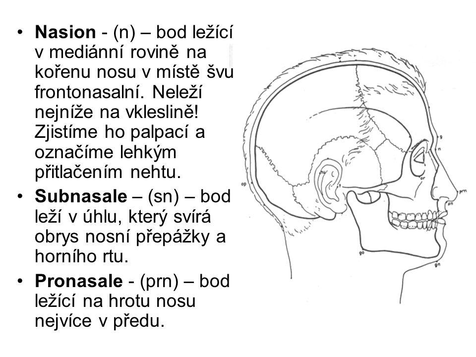 Nasion - (n) – bod ležící v mediánní rovině na kořenu nosu v místě švu frontonasalní. Neleží nejníže na vkleslině! Zjistíme ho palpací a označíme lehk