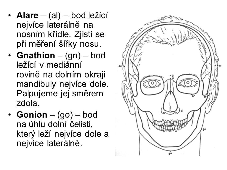 Alare – (al) – bod ležící nejvíce laterálně na nosním křídle. Zjistí se při měření šířky nosu. Gnathion – (gn) – bod ležící v mediánní rovině na dolní