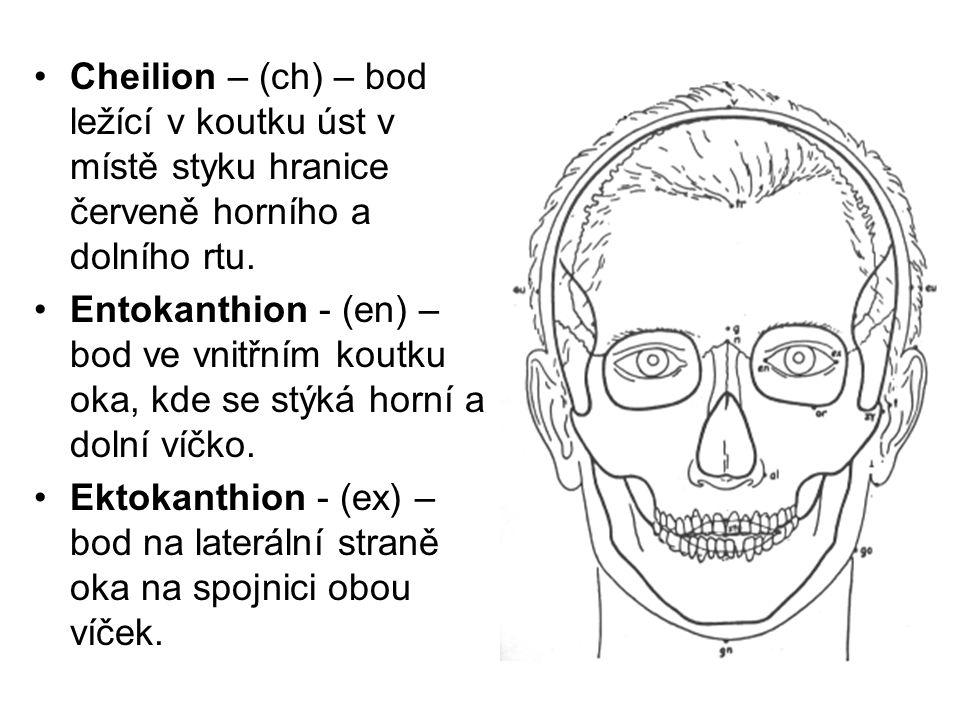 Cheilion – (ch) – bod ležící v koutku úst v místě styku hranice červeně horního a dolního rtu. Entokanthion - (en) – bod ve vnitřním koutku oka, kde s