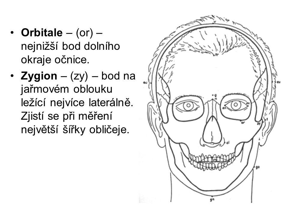 Orbitale – (or) – nejnižší bod dolního okraje očnice. Zygion – (zy) – bod na jařmovém oblouku ležící nejvíce laterálně. Zjistí se při měření největší
