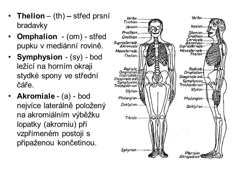 Thelion – (th) – střed prsní bradavky Omphalion - (om) - střed pupku v mediánní rovině. Symphysion - (sy) - bod ležící na horním okraji stydké spony v