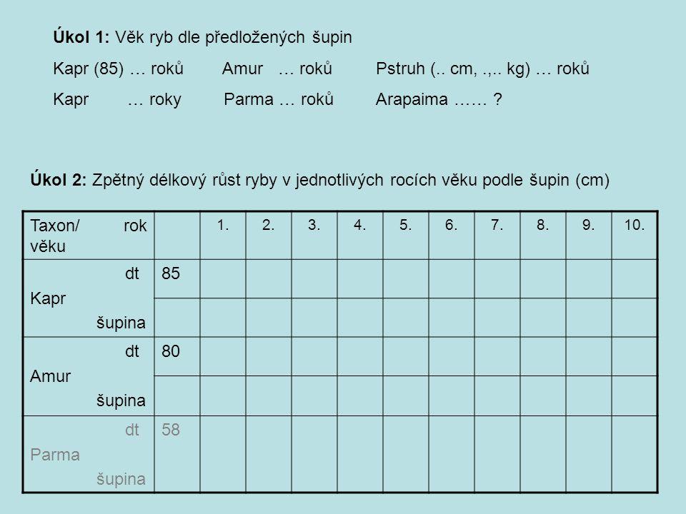Taxon/ rok věku 1.2.3.4.5.6.7.8.9.10. dt Kapr šupina 85 dt Amur šupina 80 dt Parma šupina 58 Úkol 2: Zpětný délkový růst ryby v jednotlivých rocích vě