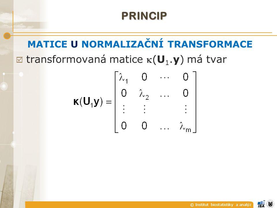 © Institut biostatistiky a analýz MATICE U NORMALIZAČNÍ TRANSFORMACE  transformovaná matice (U 1.y) má tvar PRINCIP