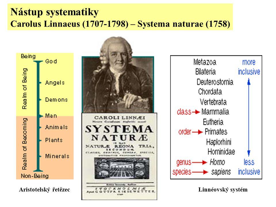 Nástup systematiky Carolus Linnaeus (1707-1798) – Systema naturae (1758) Aristotelský řetězecLinnéovský systém