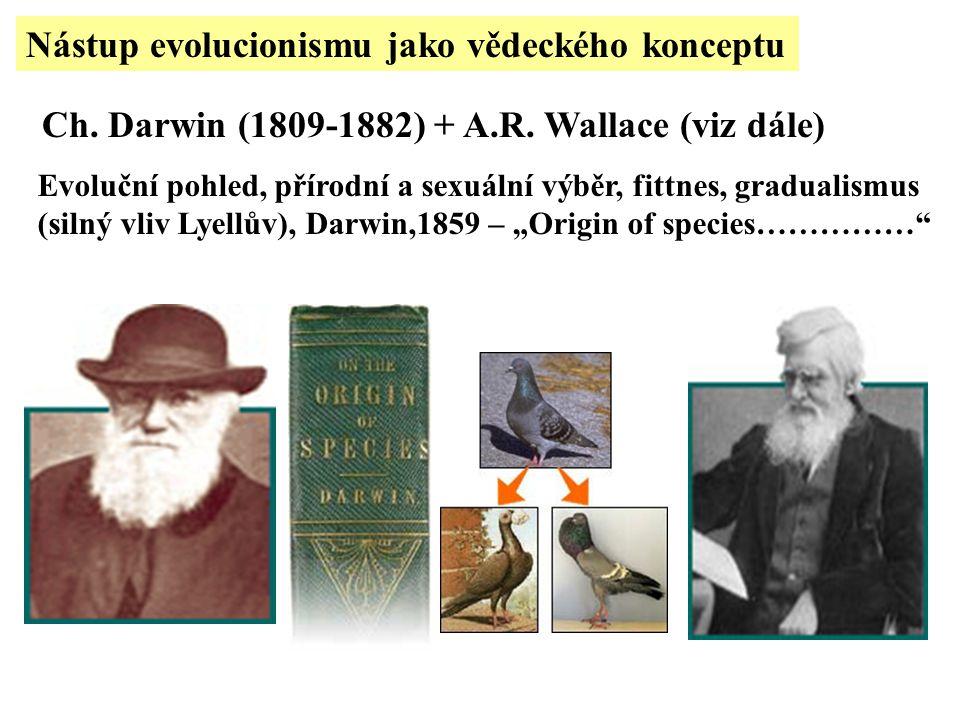Ch. Darwin (1809-1882) + A.R. Wallace (viz dále) Evoluční pohled, přírodní a sexuální výběr, fittnes, gradualismus (silný vliv Lyellův), Darwin,1859 –