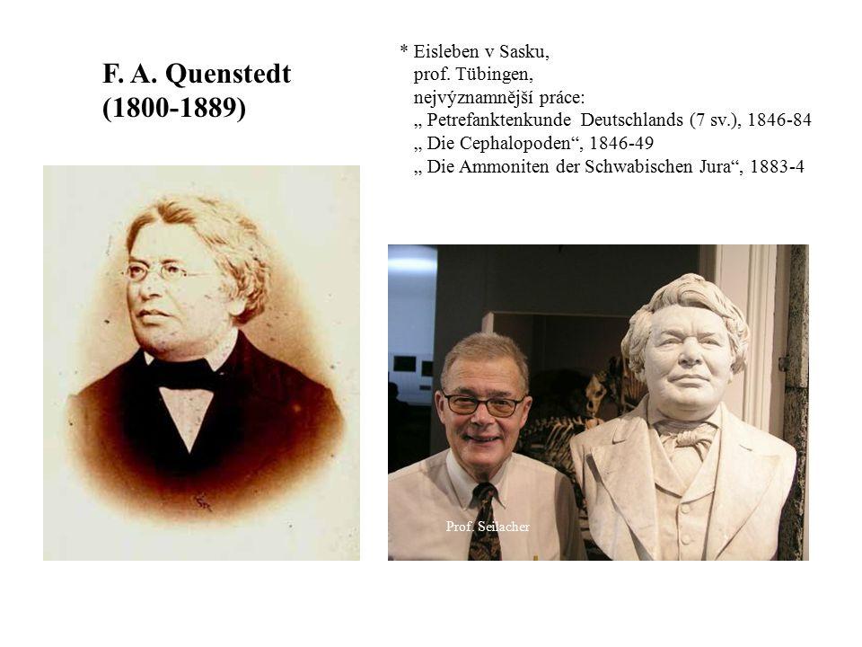 "F. A. Quenstedt (1800-1889) Prof. Seilacher * Eisleben v Sasku, prof. Tübingen, nejvýznamnější práce: "" Petrefanktenkunde Deutschlands (7 sv.), 1846-8"