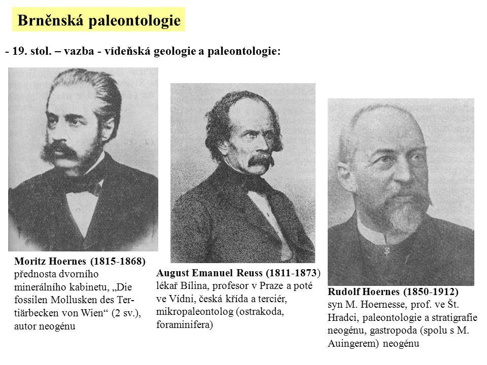 """Brněnská paleontologie - 19. stol. – vazba - vídeňská geologie a paleontologie: Moritz Hoernes (1815-1868) přednosta dvorního minerálního kabinetu, """"D"""