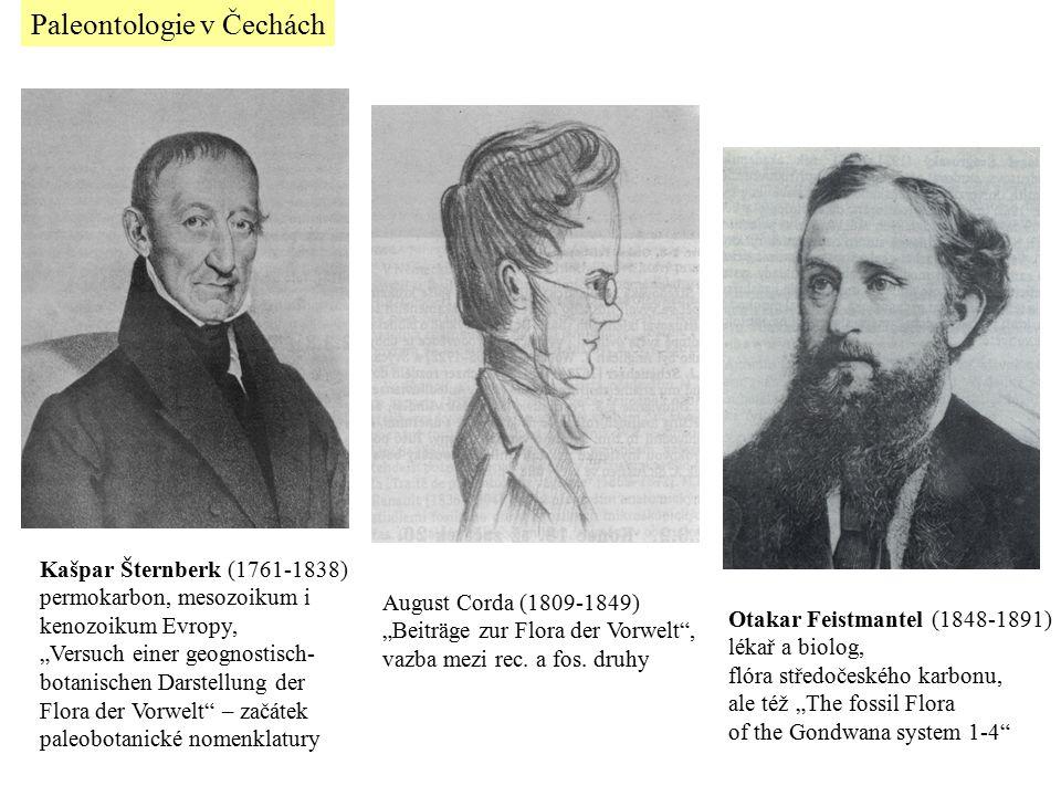 "Otakar Feistmantel (1848-1891) lékař a biolog, flóra středočeského karbonu, ale též ""The fossil Flora of the Gondwana system 1-4"" August Corda (1809-1"