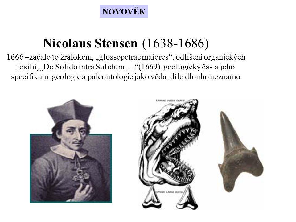 """Nicolaus Stensen (1638-1686) 1666 –začalo to žralokem, """"glossopetrae maiores"""", odlišení organických fosílií, """"De Solido intra Solidum….""""(1669), geolog"""