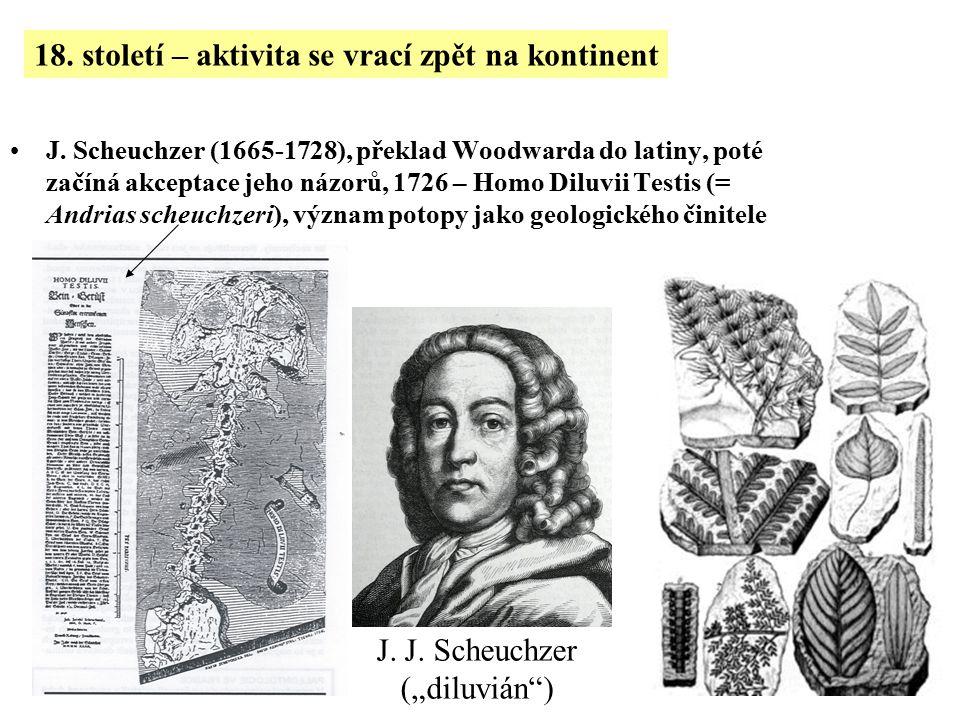 J. Scheuchzer (1665-1728), překlad Woodwarda do latiny, poté začíná akceptace jeho názorů, 1726 – Homo Diluvii Testis (= Andrias scheuchzeri), význam