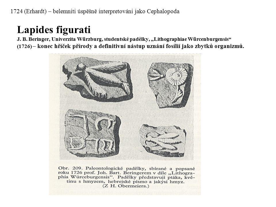 """Lapides figurati J. B. Beringer, Univerzita Würzburg, studentské padělky, """"Lithographiae Würcenburgensis"""" (1726) – konec hříček přírody a definitivní"""
