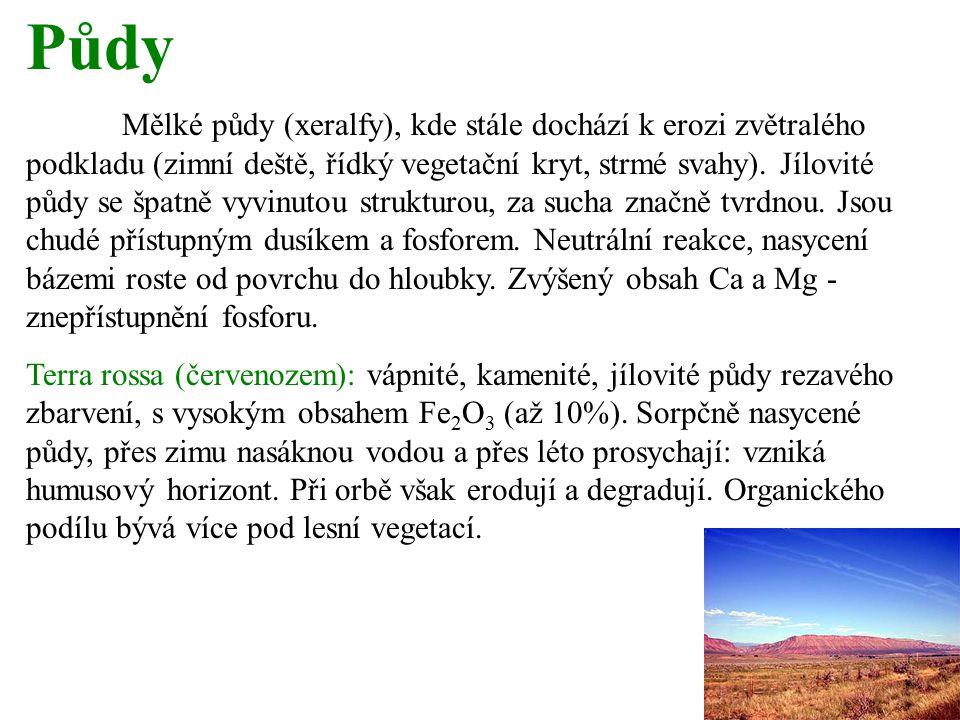 Půdy Mělké půdy (xeralfy), kde stále dochází k erozi zvětralého podkladu (zimní deště, řídký vegetační kryt, strmé svahy).