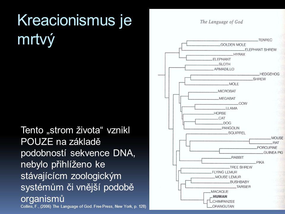 """Kreacionismus je mrtvý Tento """"strom života"""" vznikl POUZE na základě podobností sekvence DNA, nebylo přihlíženo ke stávajícícm zoologickým systémům či"""