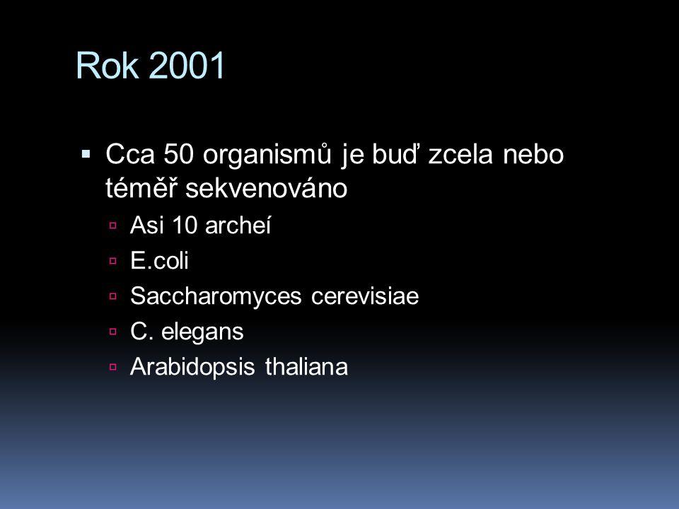 Rok 2001  Cca 50 organismů je buď zcela nebo téměř sekvenováno  Asi 10 archeí  E.coli  Saccharomyces cerevisiae  C. elegans  Arabidopsis thalian
