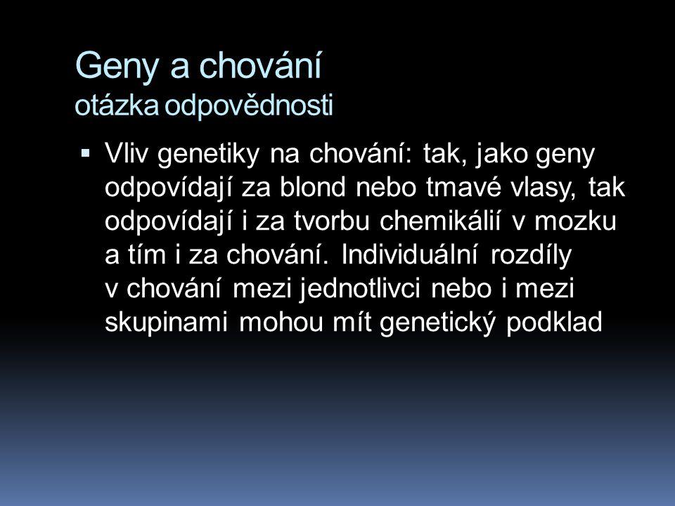 Geny a chování otázka odpovědnosti  Vliv genetiky na chování: tak, jako geny odpovídají za blond nebo tmavé vlasy, tak odpovídají i za tvorbu chemikálií v mozku a tím i za chování.