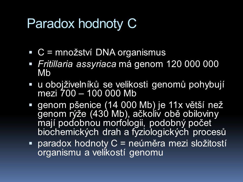 Paradox hodnoty C  C = množství DNA organismus  Fritillaria assyriaca má genom 120 000 000 Mb  u obojživelníků se velikosti genomů pohybují mezi 700 – 100 000 Mb  genom pšenice (14 000 Mb) je 11x větší než genom rýže (430 Mb), ačkoliv obě obiloviny mají podobnou morfologii, podobný počet biochemických drah a fyziologických procesů  paradox hodnoty C = neúměra mezi složitostí organismu a velikostí genomu