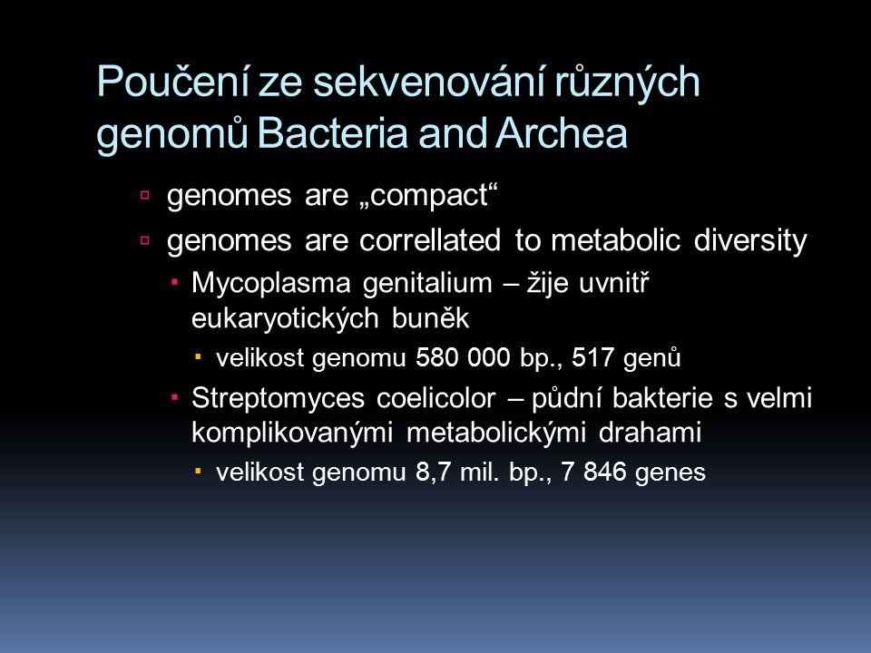 """Poučení ze sekvenování různých genomů Bacteria and Archea  genomes are """"compact  genomes are correllated to metabolic diversity  Mycoplasma genitalium – žije uvnitř eukaryotických buněk  velikost genomu 580 000 bp., 517 genů  Streptomyces coelicolor – půdní bakterie s velmi komplikovanými metabolickými drahami  velikost genomu 8,7 mil."""